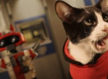 Cat's in space is The Best Sci-fi video Ever